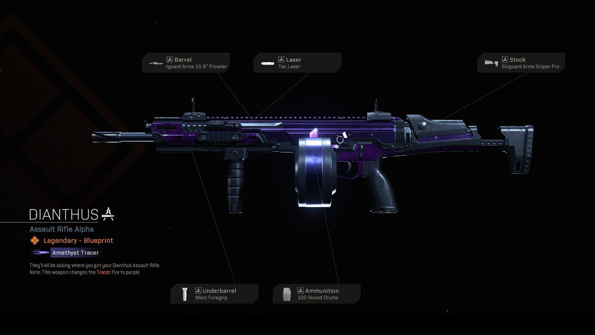 Dianthus   COD Warzone   Modern Warfare   Weapon Blueprint   Call of Duty